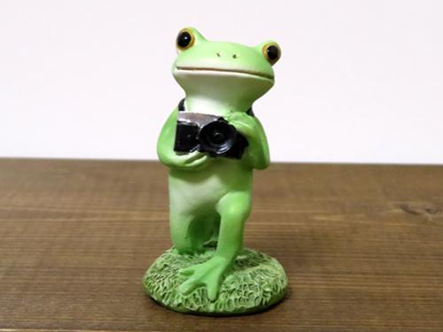 コポー カメラ小僧のカエル