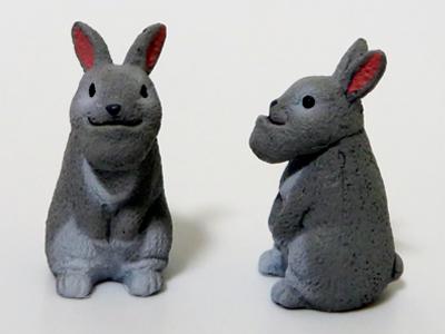 シャクレルウサギ