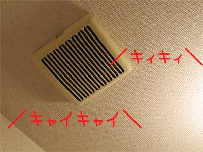 天井から音